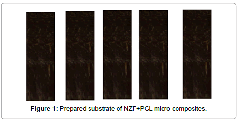 material-sciences-engineering-prepared-substrate-nzf-pcl
