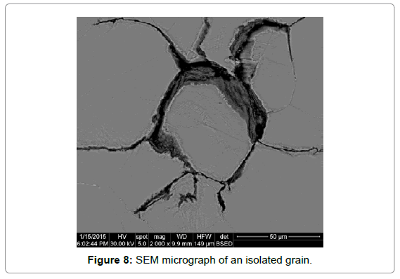 material-sciences-engineering-sem-micrograph-isolated