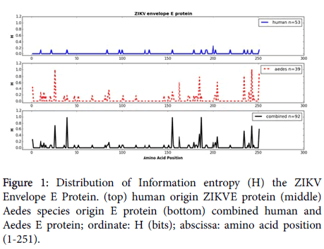 medical-microbiology-diagnosis-Distribution-Information-entropy