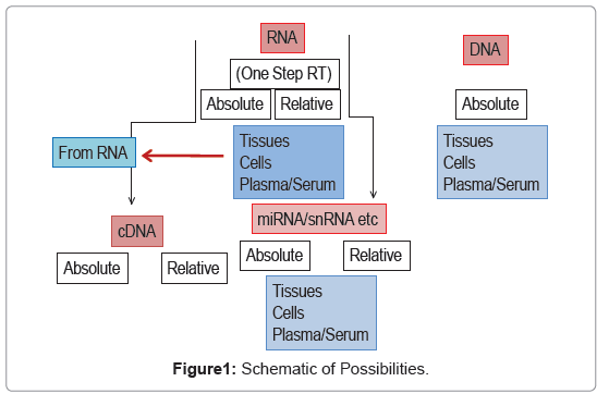 medical-microbiology-diagnosis-Schematic-Possibilities