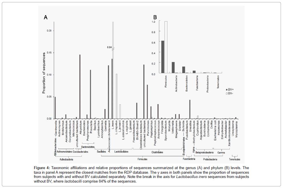medical-microbiology-diagnosis-Taxonomic-affiliations