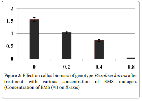 medicinal-aromatic-plants-Effect-callus-biomass-genotype