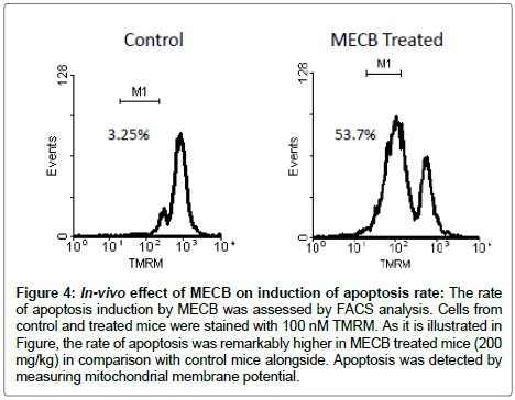 medicinal-aromatic-plants-In-vivo-effect