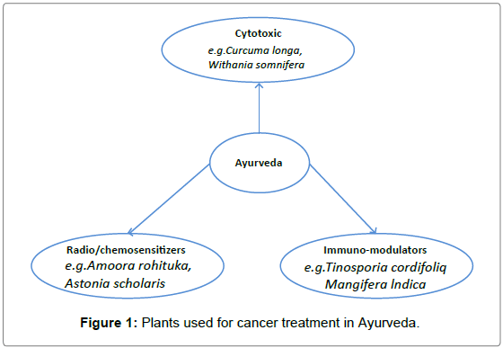 medicinal-aromatic-plants-cancer-treatment-Ayurveda