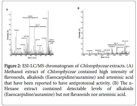 medicinal-aromatic-plants-chromatogram