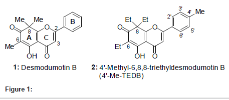 medicinal-chemistry