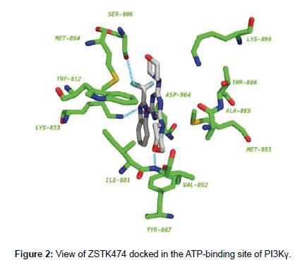 medicinal-chemistry-ATP-binding-site