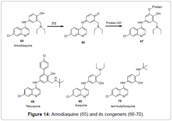 medicinal-chemistry-Amodiaquine-congeners