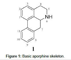 medicinal-chemistry-Basic-aporphine