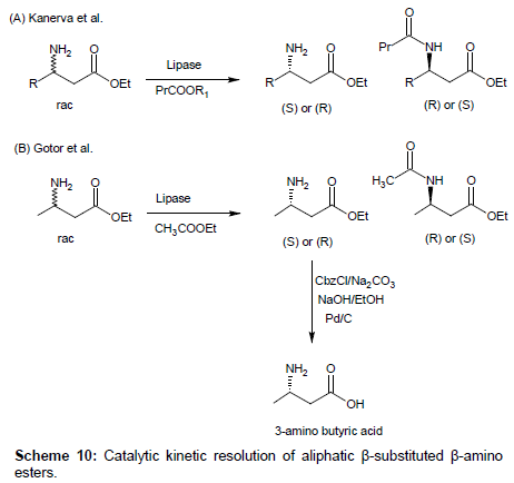 medicinal-chemistry-Catalytic-kinetic