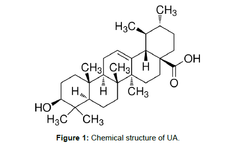 medicinal-chemistry-Chemical-structure-UA