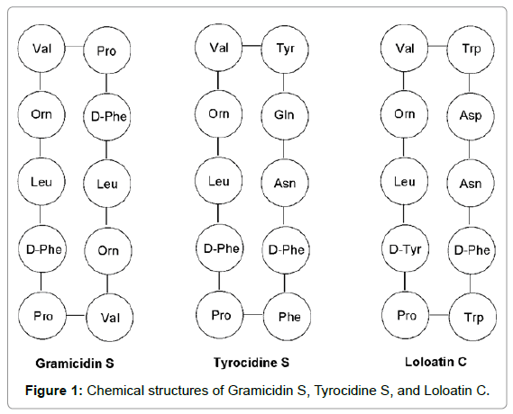 medicinal-chemistry-Chemical-structures-Gramicidin