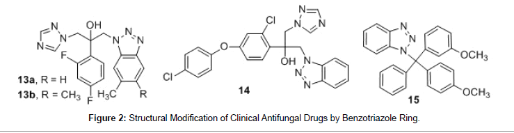 medicinal-chemistry-Clinical-Antifungal-Drugs