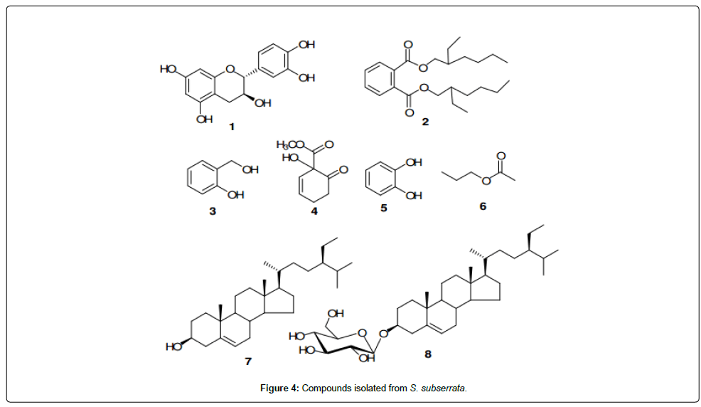 medicinal-chemistry-Compounds-isolated