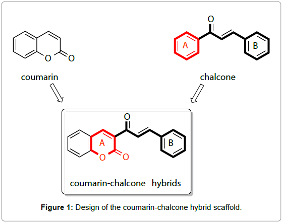 medicinal-chemistry-Design-coumarin-chalcone