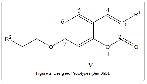 medicinal-chemistry-Designed-Prototypes