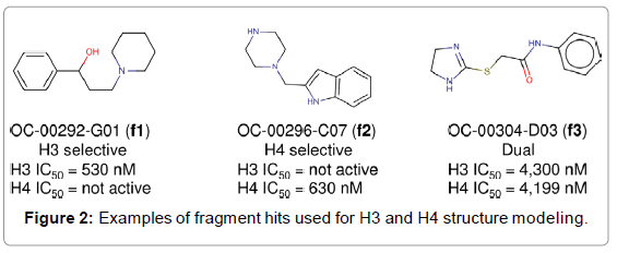 medicinal-chemistry-Examples-fragment-structure