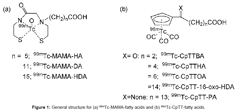 medicinal-chemistry-General-structure-MAMA-fatty