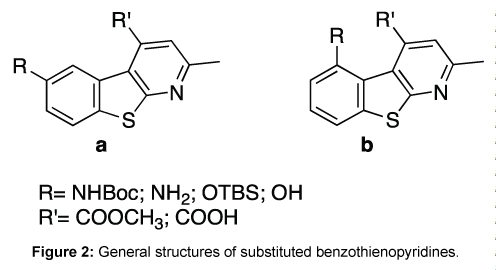 medicinal-chemistry-General-structures