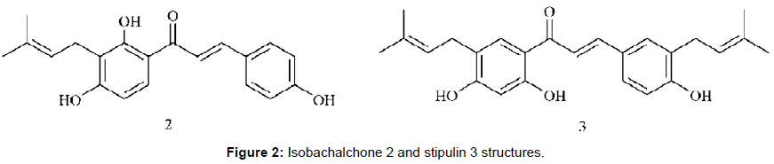 medicinal-chemistry-Isobachalchone-stipulin-structures