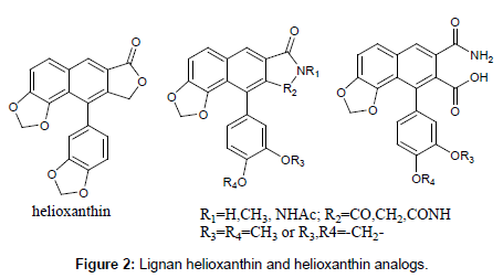 medicinal-chemistry-Lignan-helioxanthin