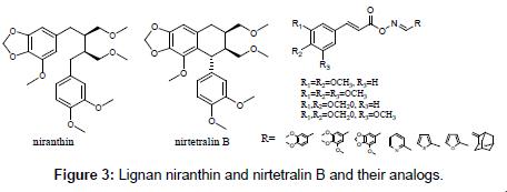 medicinal-chemistry-Lignan-niranthin-nirtetralin