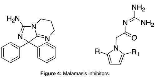 medicinal-chemistry-Malamas-inhibitors