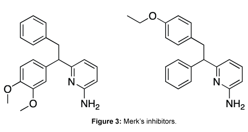 medicinal-chemistry-Merk-inhibitors