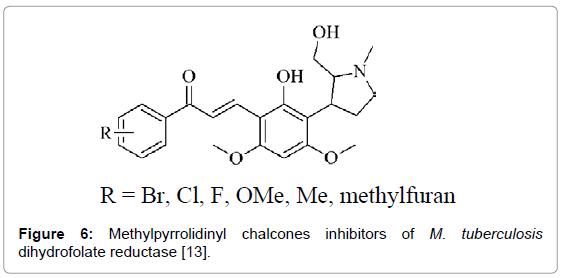 medicinal-chemistry-Methylpyrrolidinyl-chalcones-inhibitors