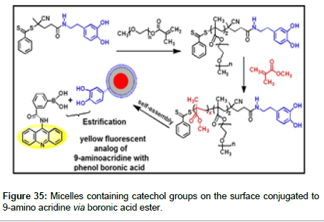 medicinal-chemistry-Micelles-containing