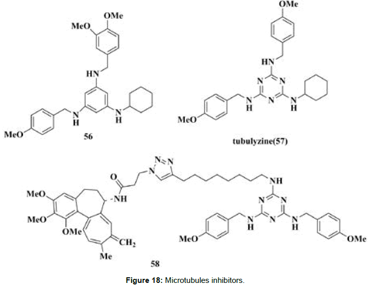 medicinal-chemistry-Microtubules-inhibitors