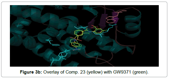 medicinal-chemistry-Overlay-Comp-yellow