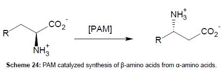 medicinal-chemistry-PAM-catalyzed