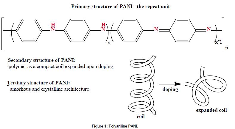 medicinal-chemistry-Polyaniline-PANI