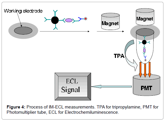 medicinal-chemistry-Process-measurements-tripropylamine