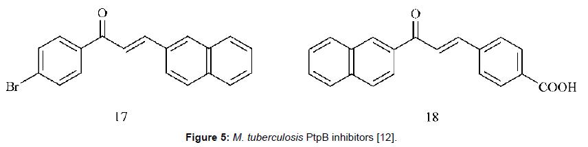medicinal-chemistry-PtpB-inhibitors