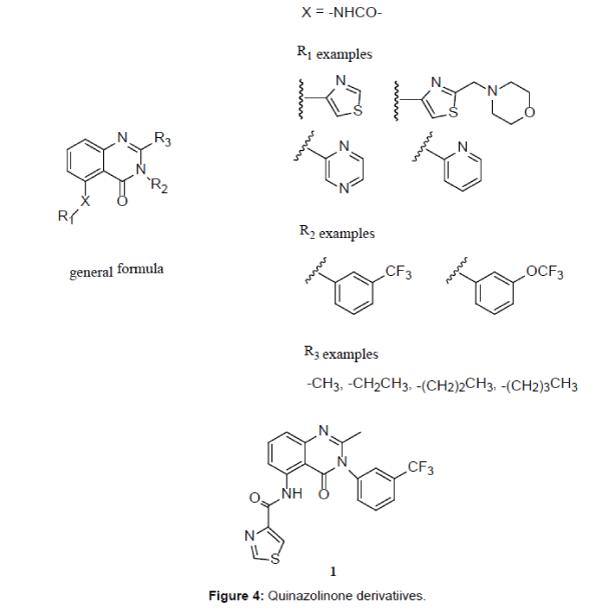 medicinal-chemistry-Quinazolinone-derivatiives