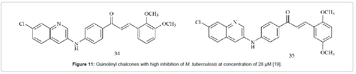 medicinal-chemistry-Quinolinyl-chalcones-inhibition