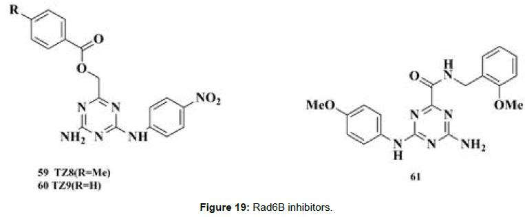 medicinal-chemistry-Rad6B-inhibitor