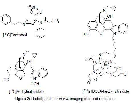medicinal-chemistry-Radioligands