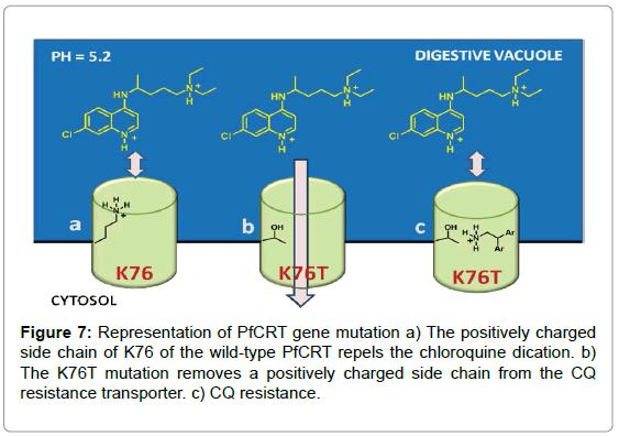 medicinal-chemistry-Representation-mutation-charged