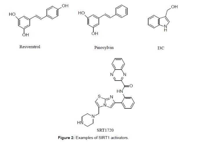 medicinal-chemistry-SIRT1-activators
