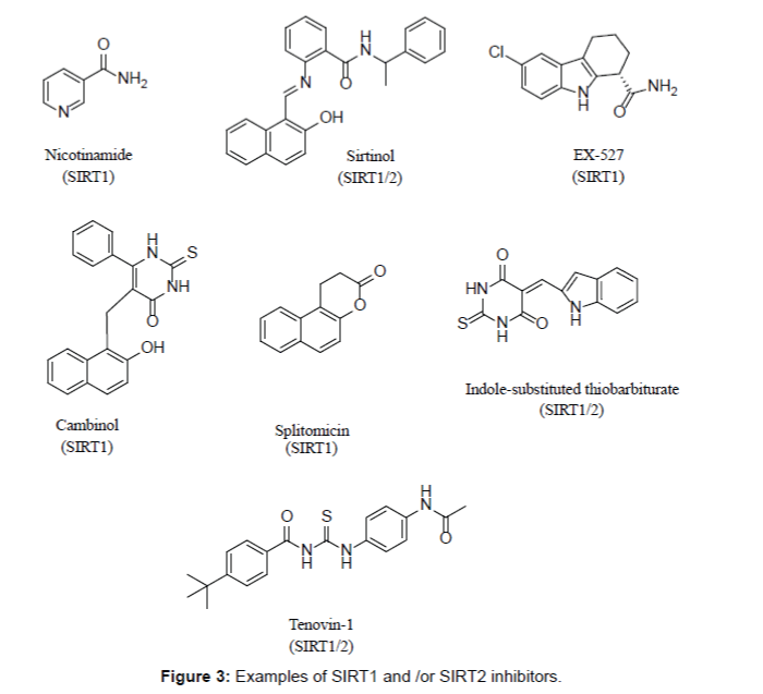 medicinal-chemistry-SIRT2-inhibitors