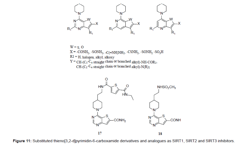 medicinal-chemistry-SIRT3-inhibitors-6-411-g011