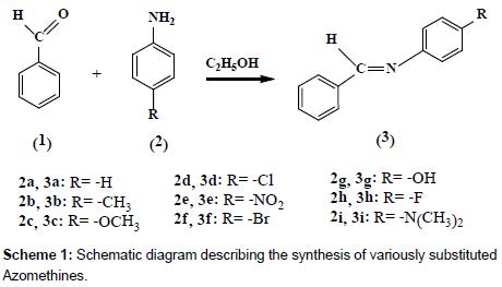 medicinal-chemistry-Schematic-diagram-describing