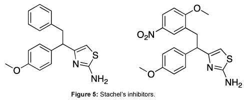 medicinal-chemistry-Stachel-inhibitors