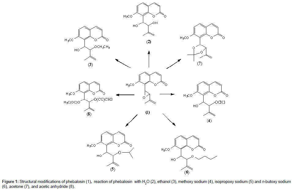 medicinal-chemistry-Structural-modifications
