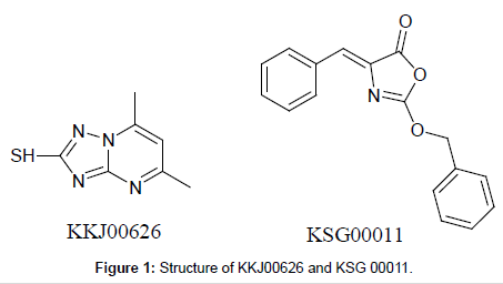 medicinal-chemistry-Structure-KKJ00626