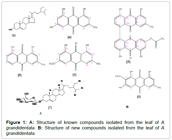 medicinal-chemistry-Structure-compounds-isolated