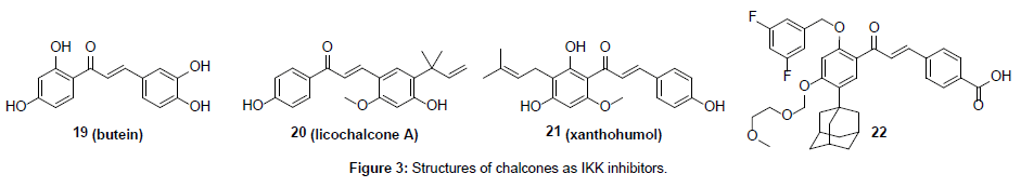 medicinal-chemistry-Structures-chalcones